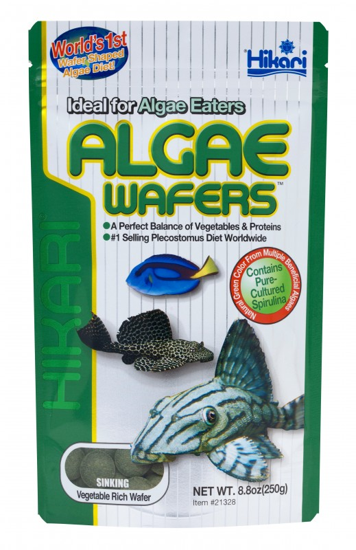"Hikari Algae Wafers - The ""Original Algae Wafer"" Diet For Plecostomus & Algae Eaters!"